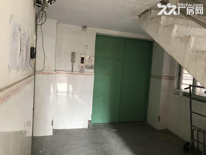 金沙洲电梯厂房出租−新八层200平米/层/1600平米-图(3)