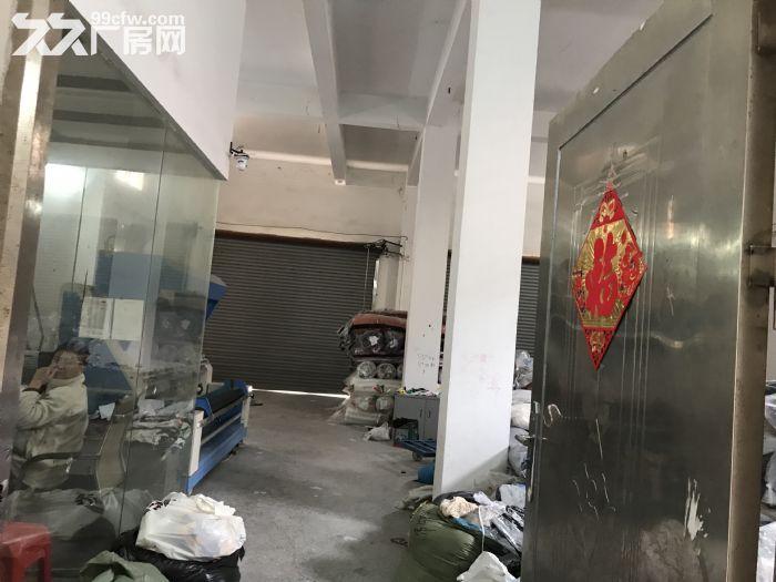 金沙洲电梯厂房出租−新八层200平米/层/1600平米-图(4)