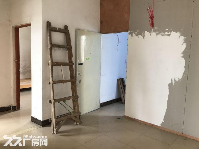 金沙洲电梯厂房出租−新八层200平米/层/1600平米-图(8)