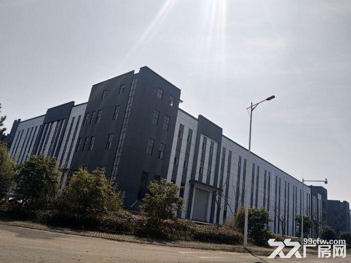 安徽九龙科创园全新厂房出租-图(3)
