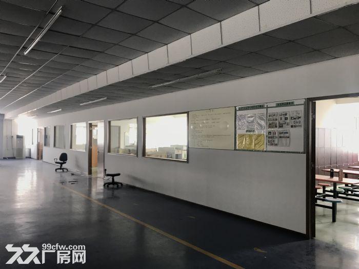 1000平米车间出租-图(3)