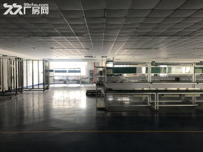 1000平米车间出租-图(5)