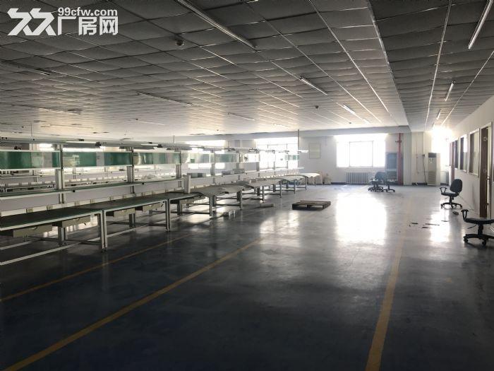 1000平米车间出租-图(6)