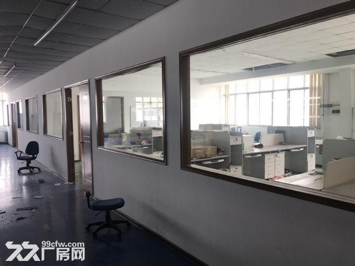 1000平米车间出租-图(7)