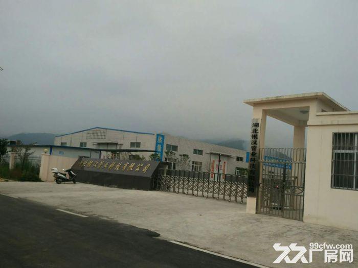 出租或出售郧西工业园区场地、仓库、厂房20亩-图(2)