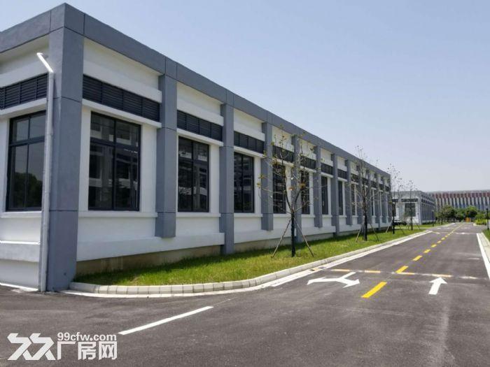 苏州新区科技城1300到40000平米厂房出租火热-图(4)