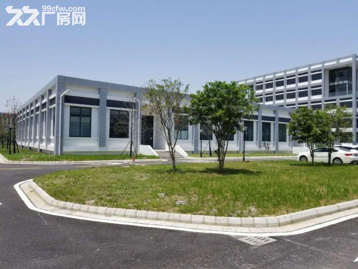 苏州新区科技城1300到40000平米厂房出租火热-图(3)