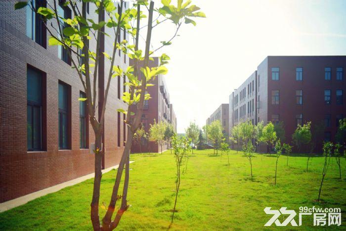 正阳西路,1200−3200平全新标准厂房出售,可办土地证-图(7)