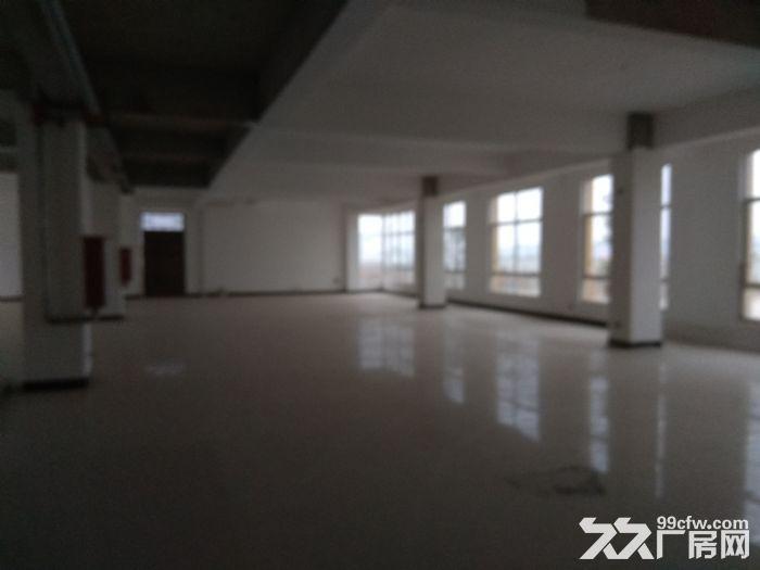 上石桥工业园区超大厂房出租,可随意调头,办好环评证-图(4)