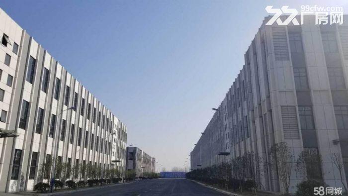 六安标准化厂房、单层轻钢-图(3)