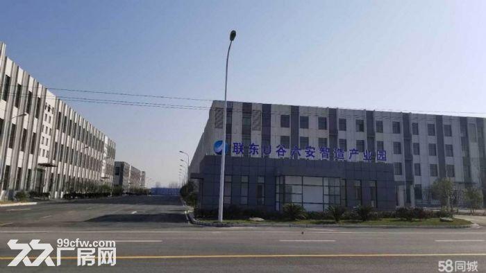 六安标准化厂房、单层轻钢-图(4)