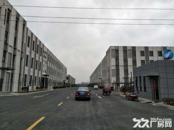 六安厂房租赁、独立办公、单层轻钢-图(1)