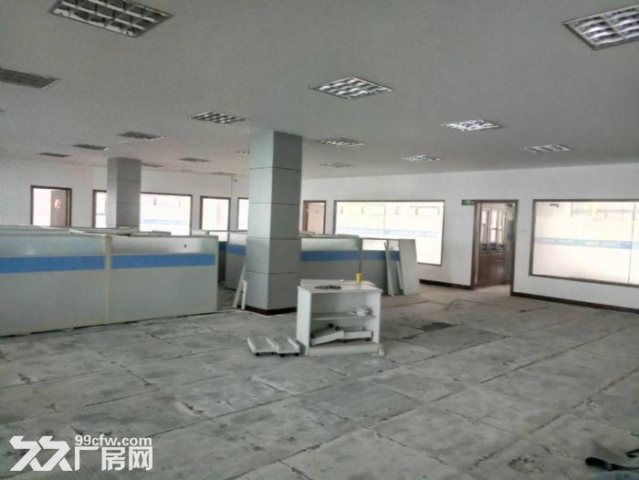 软件园整栋办公楼出租-图(2)