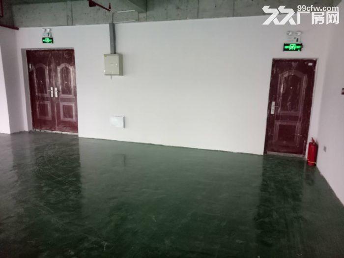 轻工业园区,地铁口380平简装框架式结构厂房出租!!!-图(1)