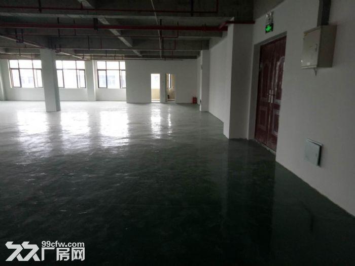 轻工业园区,地铁口380平简装框架式结构厂房出租!!!-图(5)