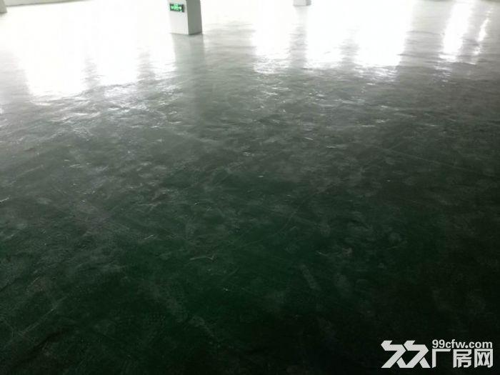 轻工业园区,地铁口380平简装框架式结构厂房出租!!!-图(6)
