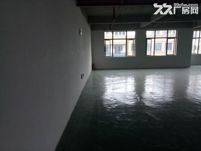 轻工业园区,地铁口380平简装框架式结构厂房出租!!!-图(7)