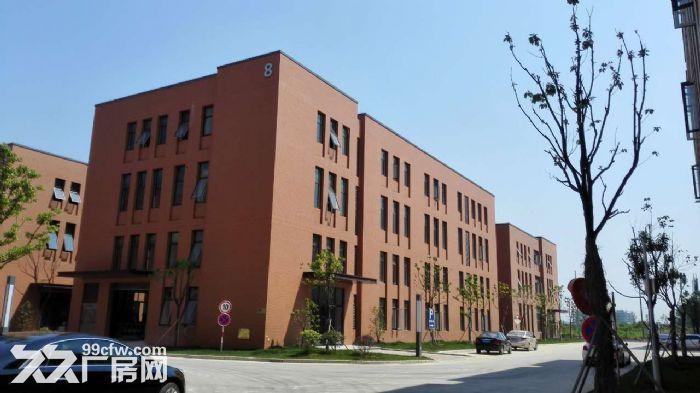 独栋2000产权工业厂房有证可贷款国家级开发区内-图(2)