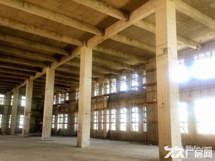独栋2000产权工业厂房有证可贷款国家级开发区内-图(4)