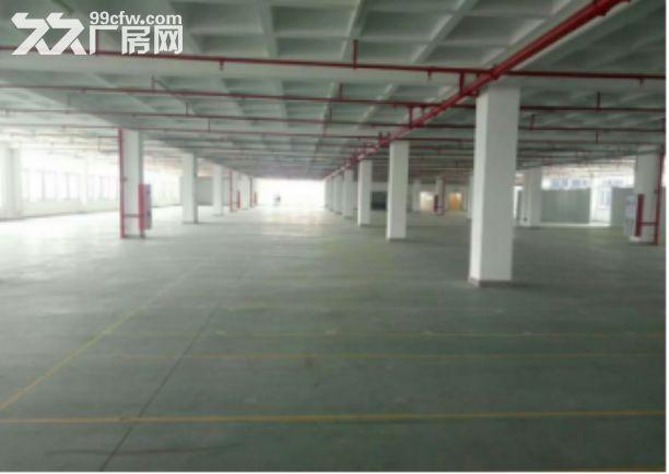 翔安高新工业园40000平出租-图(2)