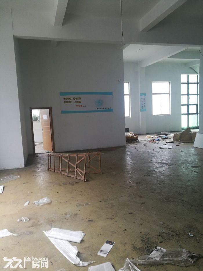 松江老城510平米厂房有产证-图(3)