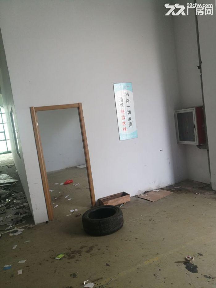 松江老城510平米厂房有产证-图(4)