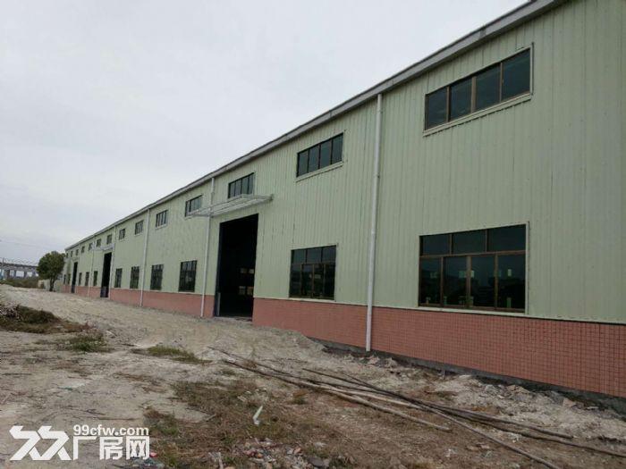 单一层钢结构厂房10元出租-图(3)