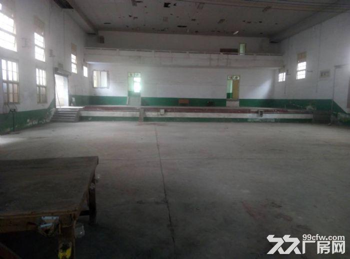春华镇3000平砖混结构厂房低价出租!!-图(5)