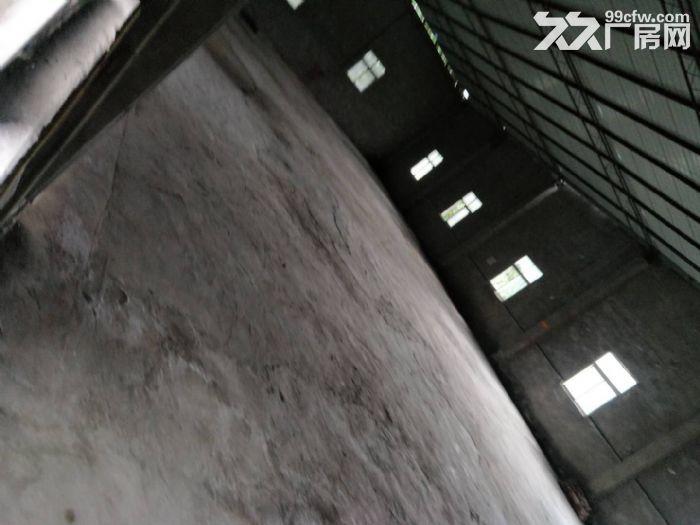 南岸长生桥附近800平米门面厂房、仓库出租-图(1)