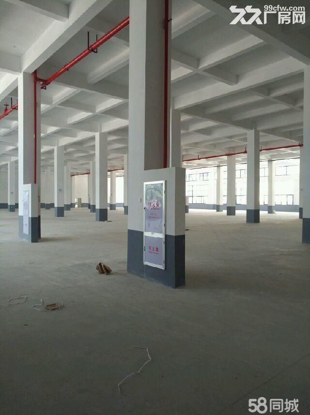 湖里园全新厂房3楼1500平厂房电大-图(1)