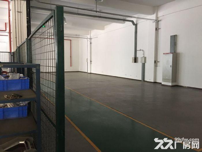 双流物连传感10000平米高标准车间宿舍出租-图(1)