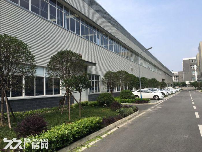 双流物连传感10000平米高标准车间宿舍出租-图(4)