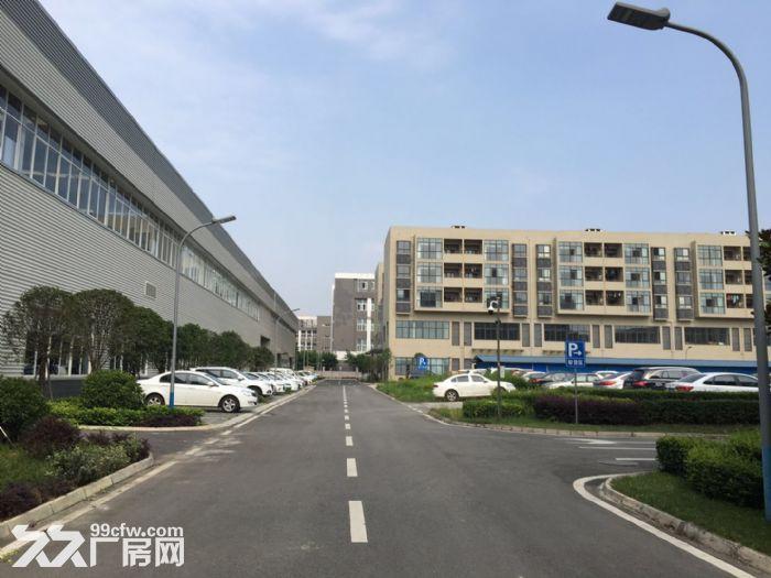 双流物连传感10000平米高标准车间宿舍出租-图(6)