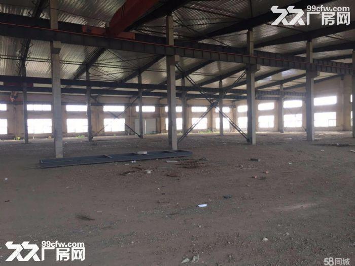 超大厂房招租5700m²厂房+2700m²办公-图(4)