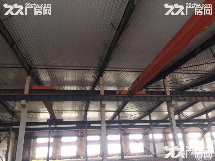 超大厂房招租5700m²厂房+2700m²办公-图(5)