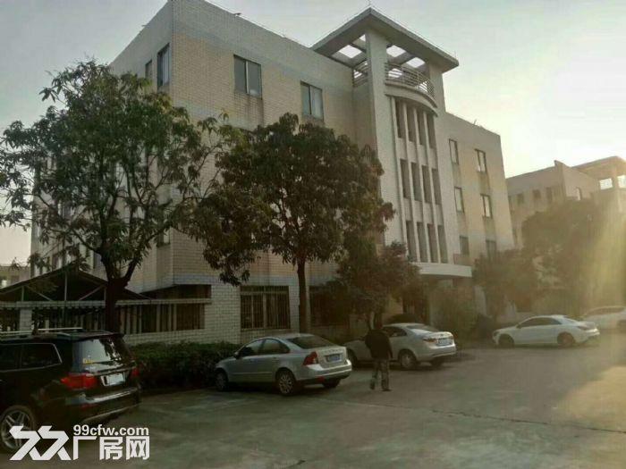 独门独院单一层钢结构10米高厂房10000平方厂房出租-图(3)
