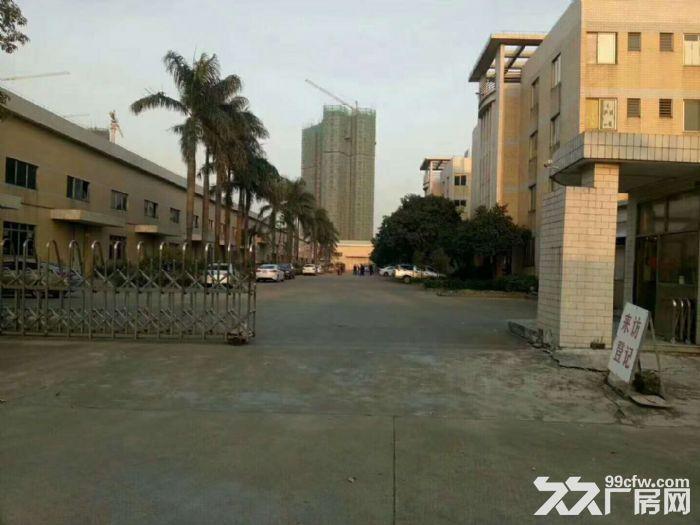 独门独院单一层钢结构10米高厂房10000平方厂房出租-图(4)