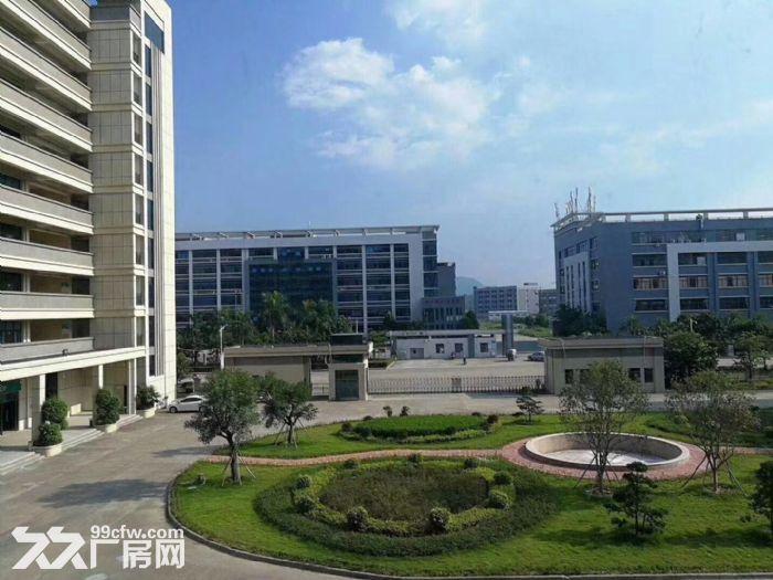 惠阳经济开发区大型科技园厂房招租-图(2)