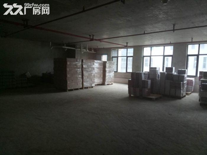 地铁口!轻工业园区430平框架式结构厂房出租!-图(2)