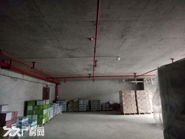 地铁口!轻工业园区430平框架式结构厂房出租!-图(3)