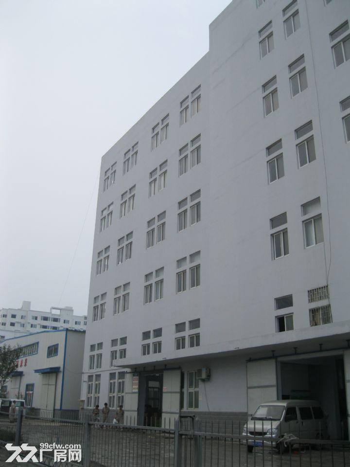 郑州管城区1800平可分割标准厂房仓库出租-图(2)