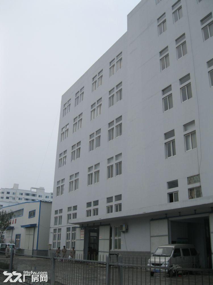 郑州委托出租仓库厂房办公室1800平可隔开-图(2)