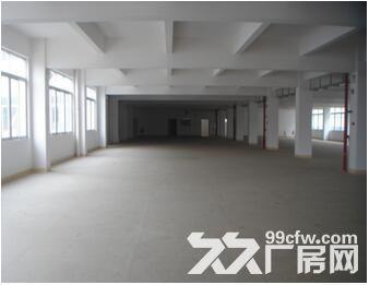 火炬周边一层6m高全新厂房环境优雅-图(2)