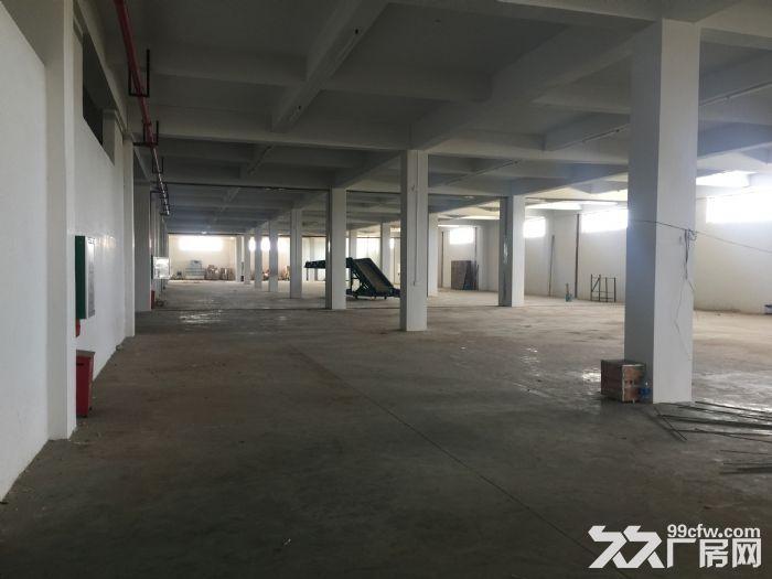 (出租)出租海口秀英区仓库2500~6500平-图(5)
