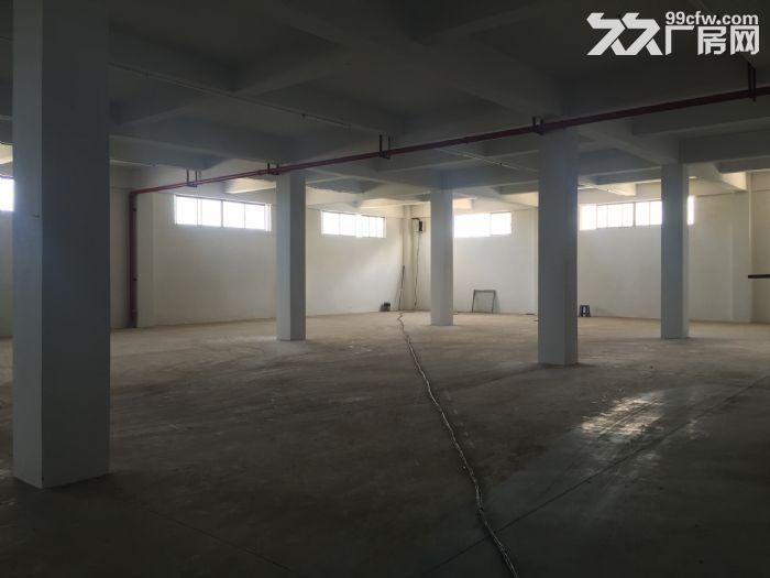 (出租)出租海口秀英区仓库2500~6500平-图(6)