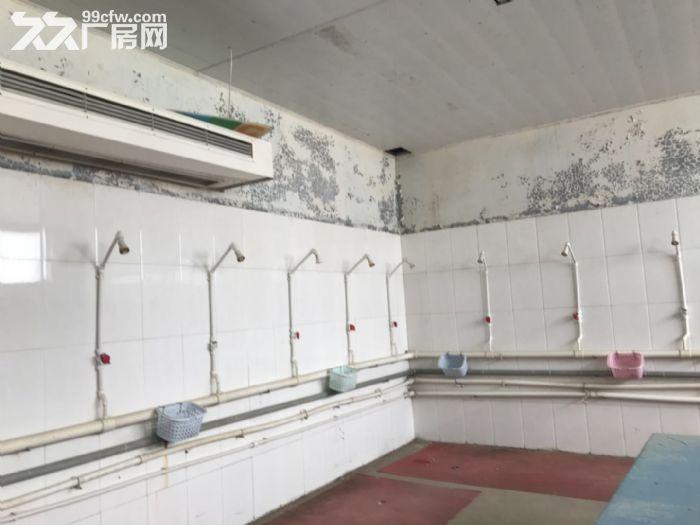 《旺铺帮》泊头齐桥镇好位置厂房对外出租出售-图(3)