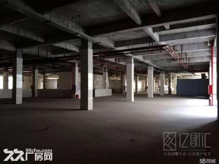 马尾自贸区独门独院百亩场地上万平厂房招租沿国道-图(3)