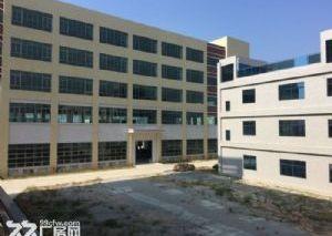 《靓》水口占地1万平米厂房出售
