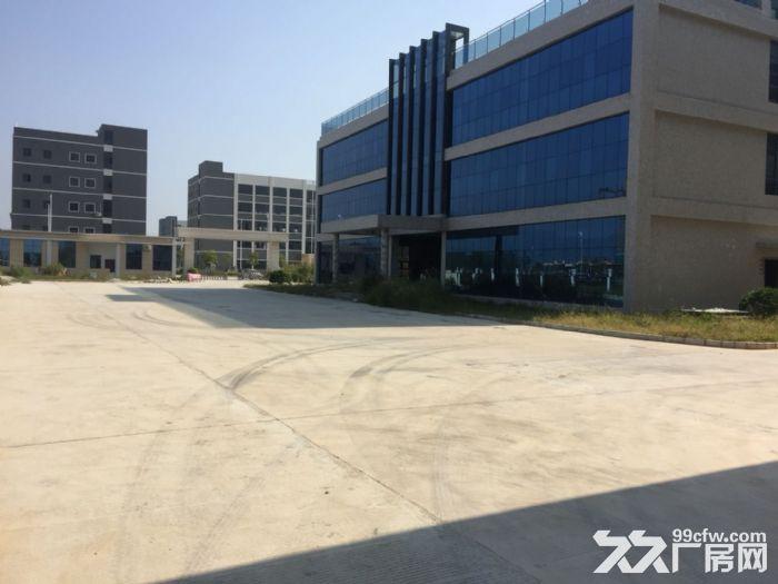 《靓》水口占地1万平米厂房出售-图(3)