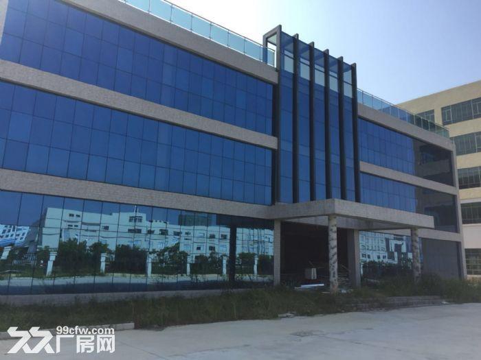 《靓》水口占地1万平米厂房出售-图(4)